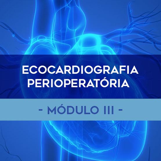 ECOCARDIOGRAFIA PERIOPÉRATÓRIA (MOD III) << VAGAS ESGOTADAS PARA PRÁTICA DIA 20/12 >>